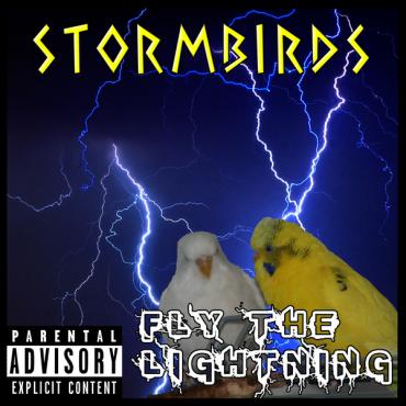 Stormbirds_s